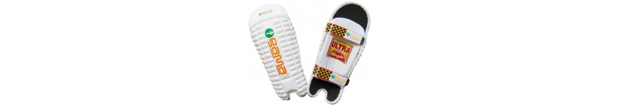 Batting and Wicket Keeping Pads