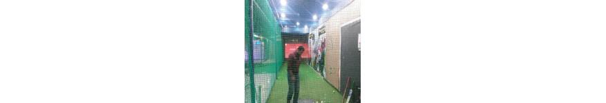 Virtual Cricket Simulators