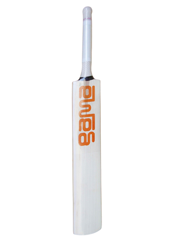 JET Kashmir Willow Cricket Bat
