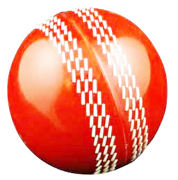 PVC Cricket Ball